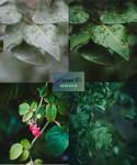 LP preset #1: Leaves