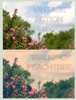 Action 02  V I N T A G E by walking-peachtree