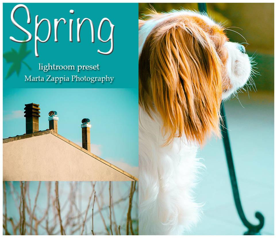 Spring lightroom preset by MartaLilita