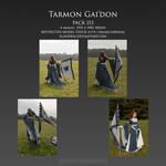 Pack 153 Tarmon Gai'don by Elandria