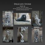 Delicate Stone Pack 56