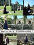 Fountains Abbey Stock Set 2 RESTRICTED
