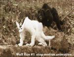 Stop Motion - Wolfs Run 1