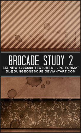 Brocade Study 2 Texture Set by dungeonesque