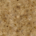 Seamless Bone Texture