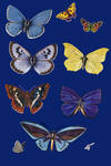 Vict pck 26-butterfly_quaddles