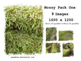 Mossy PACK One_quaddles