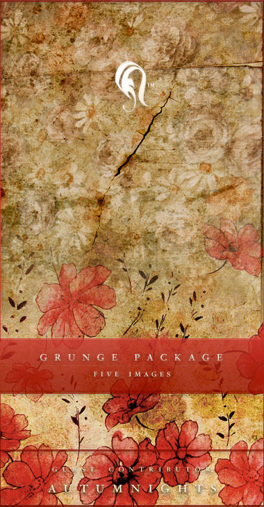http://fc03.deviantart.com/fs16/i/2007/219/1/4/Package___Vintage_Grunge___2_by_resurgere.jpg