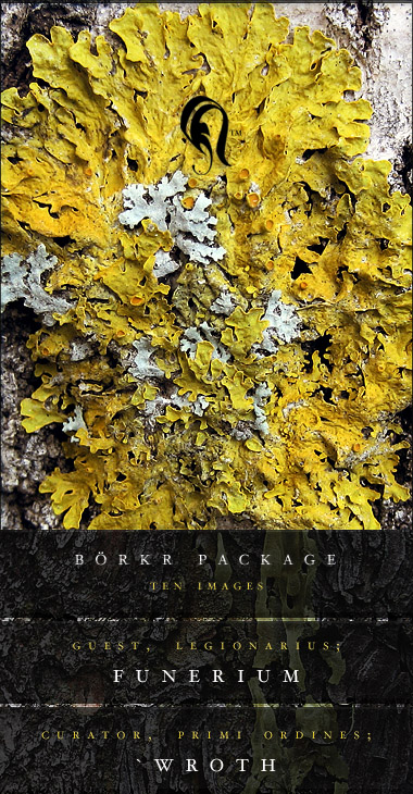 Package - Borkr - 9
