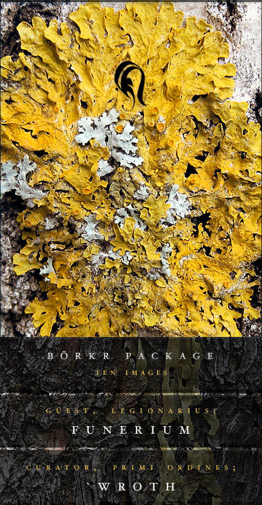 Package - Borkr - 9 by resurgere