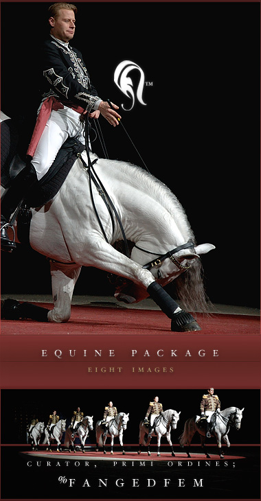 Package - Equine - 2