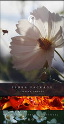 Package - Flora - 10 by resurgere