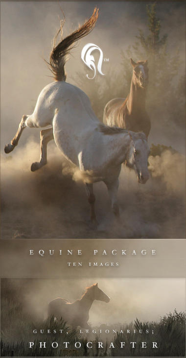 Package - Equine - 3 by resurgere