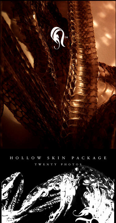 Package - HollowSkin - 2 by resurgere
