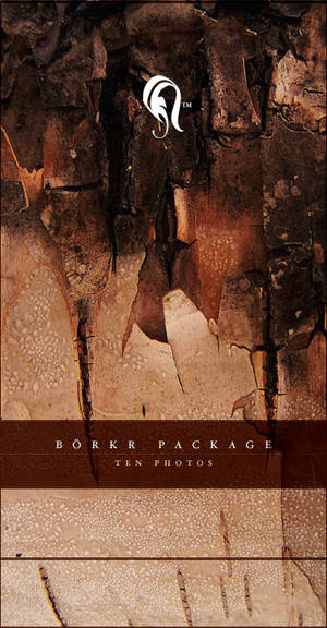 Package - Borkr - .5