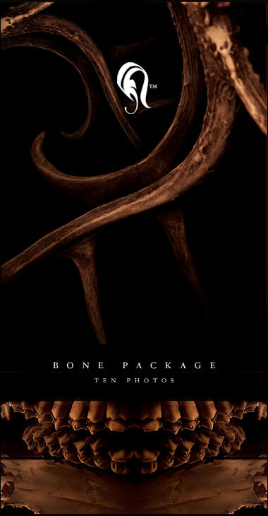 Package - Bone - 1 by resurgere