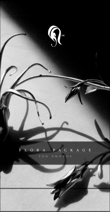 Package - Flora - 1 by resurgere