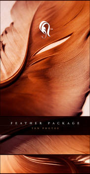 Package - Feather - 2