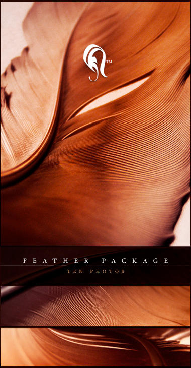 Package - Feather - 2 by resurgere