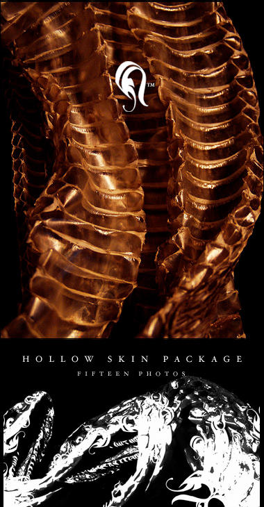 Package - HollowSkin - 3 by resurgere
