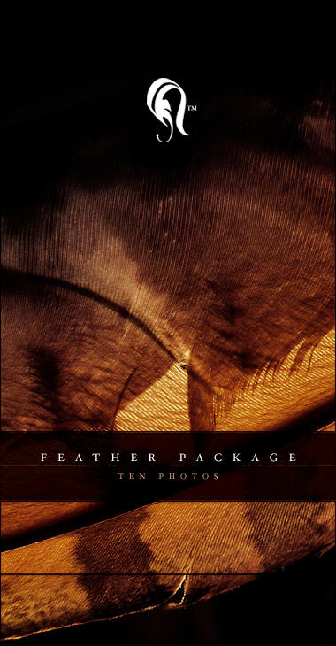 Package - Feather - 3 by resurgere
