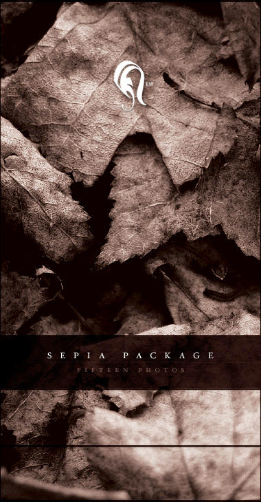Package - Sepia - 1 by resurgere