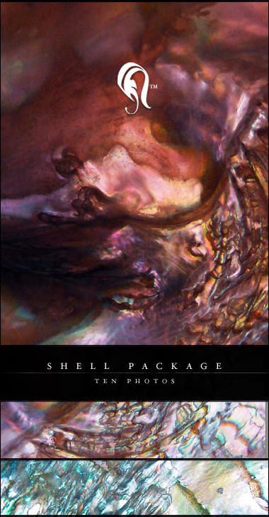 Package - Shell - 1 by resurgere