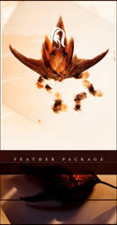 Package - Feather - 5 by resurgere