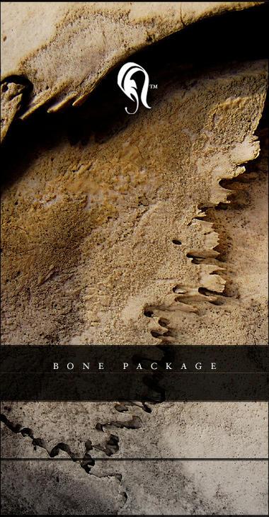 Package - Bone - 3 by resurgere