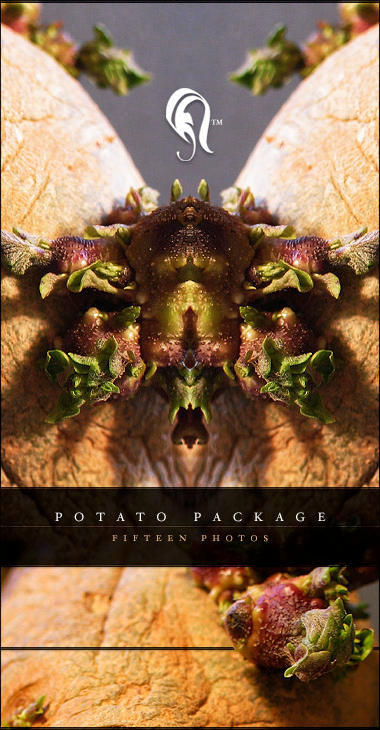 Package - Potato - 1 by resurgere