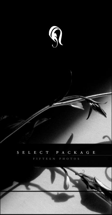 Package - Select - Para 1 by resurgere