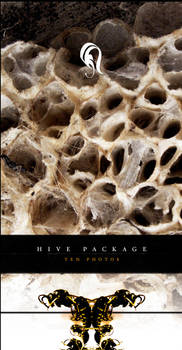 Package - Hive - 1