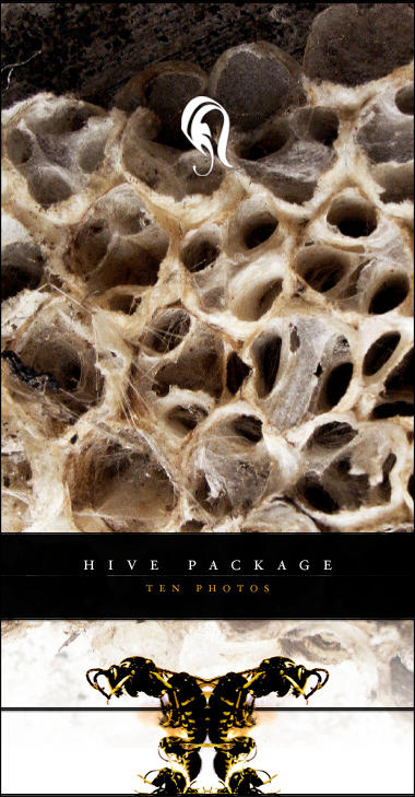Package - Hive - 1 by resurgere