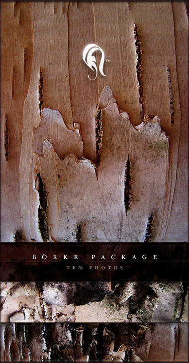 Package - Borkr - 6 by resurgere