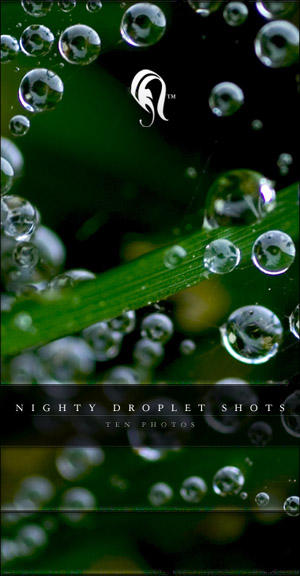 Package - Nighty Droplet Shots