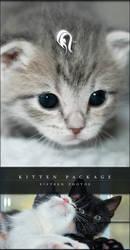 Package - Kitten - 1 by resurgere
