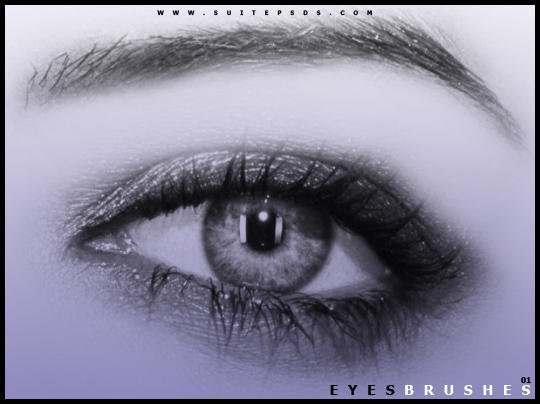 EyeBrushes01 by SuitePSDs