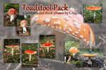 Toadstool pack