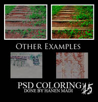 psd coloring 15 by Hanen-Madi