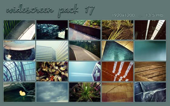 widescreen pack 17