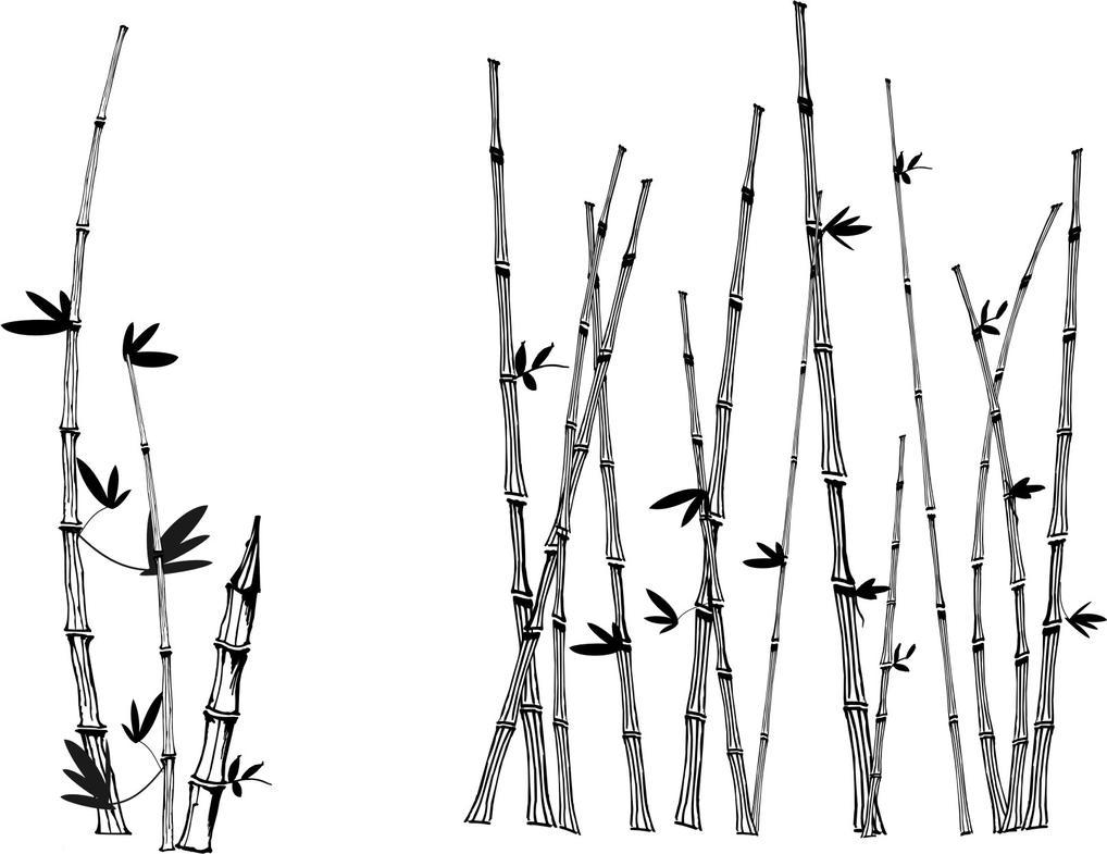 vector version of bamboo by creativeblur on DeviantArt