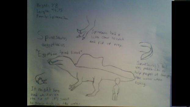 Spinosaurus aegyptiacus species profile