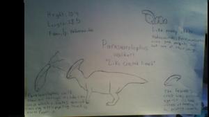 Parasarolophus walkeri species profile