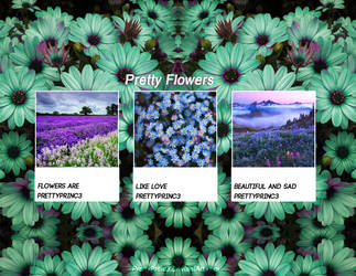 Pretty Flowers || Textures Pack by PrettyPrinc3