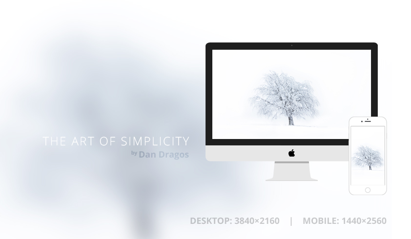The Art of Simplicity Wallpaper by dandragos