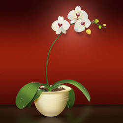 Orchid Icon, 512px-16px