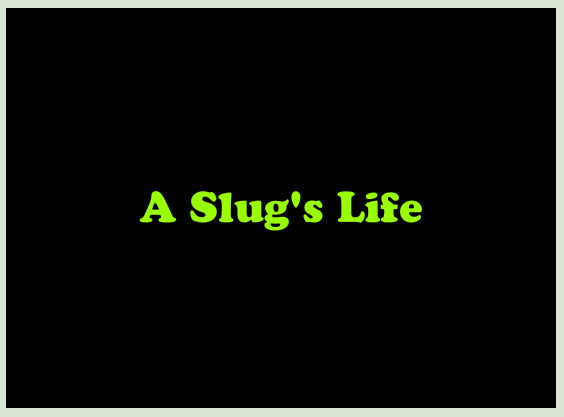 A Slug's Life