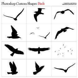 Custom Shapes: Birds by lukeroberts