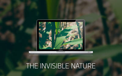 THE INVISIBLE NATURE