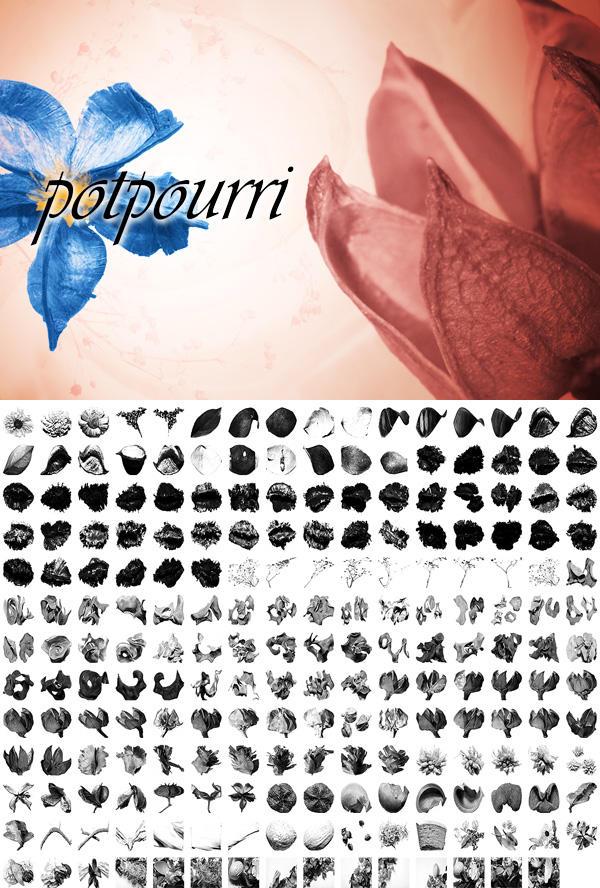 Potpourri by pstutorialsws